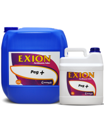 Exion Peg +