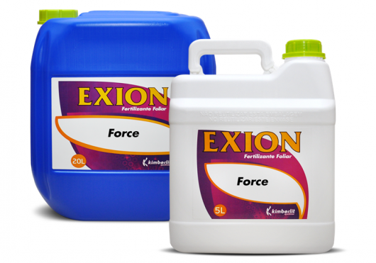 Exion Force